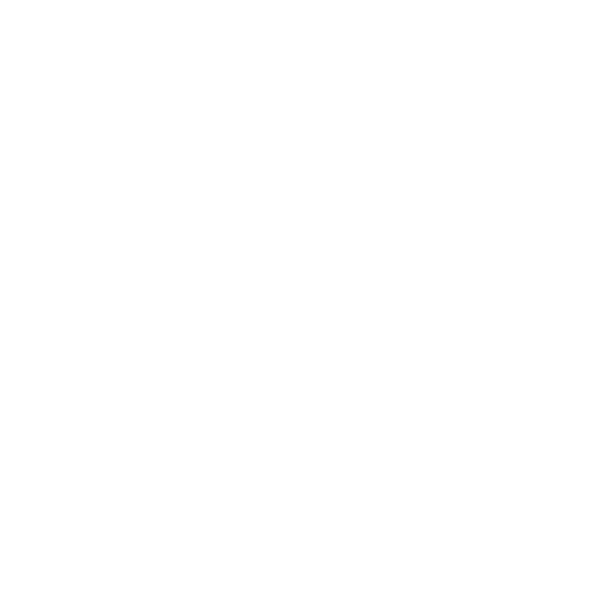 content audit white icon.png