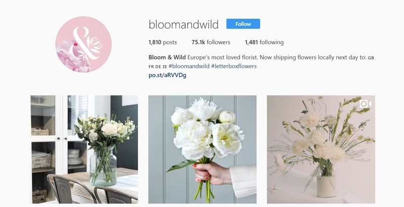 bloom and wild instagram campaign