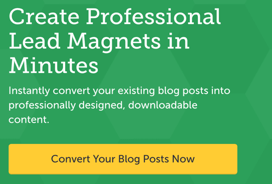 create professional lead magnets in minutes