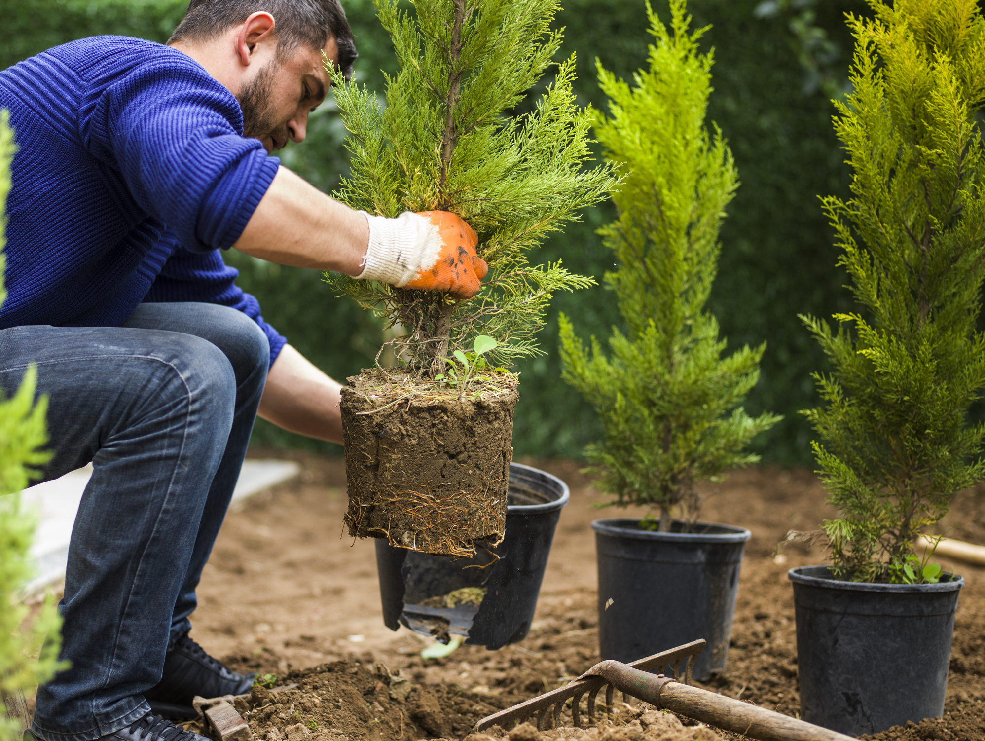 4 Strategies to Grow Your Landscaping Business